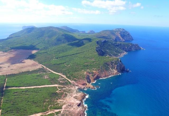 Cliff of Capo Caccia