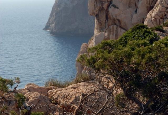 Mediterranean biome at Capo Caccia